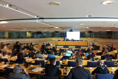 At the European Parliament in Brussels October 2, the Arts-Rights-Justice Working Group (ARJ)